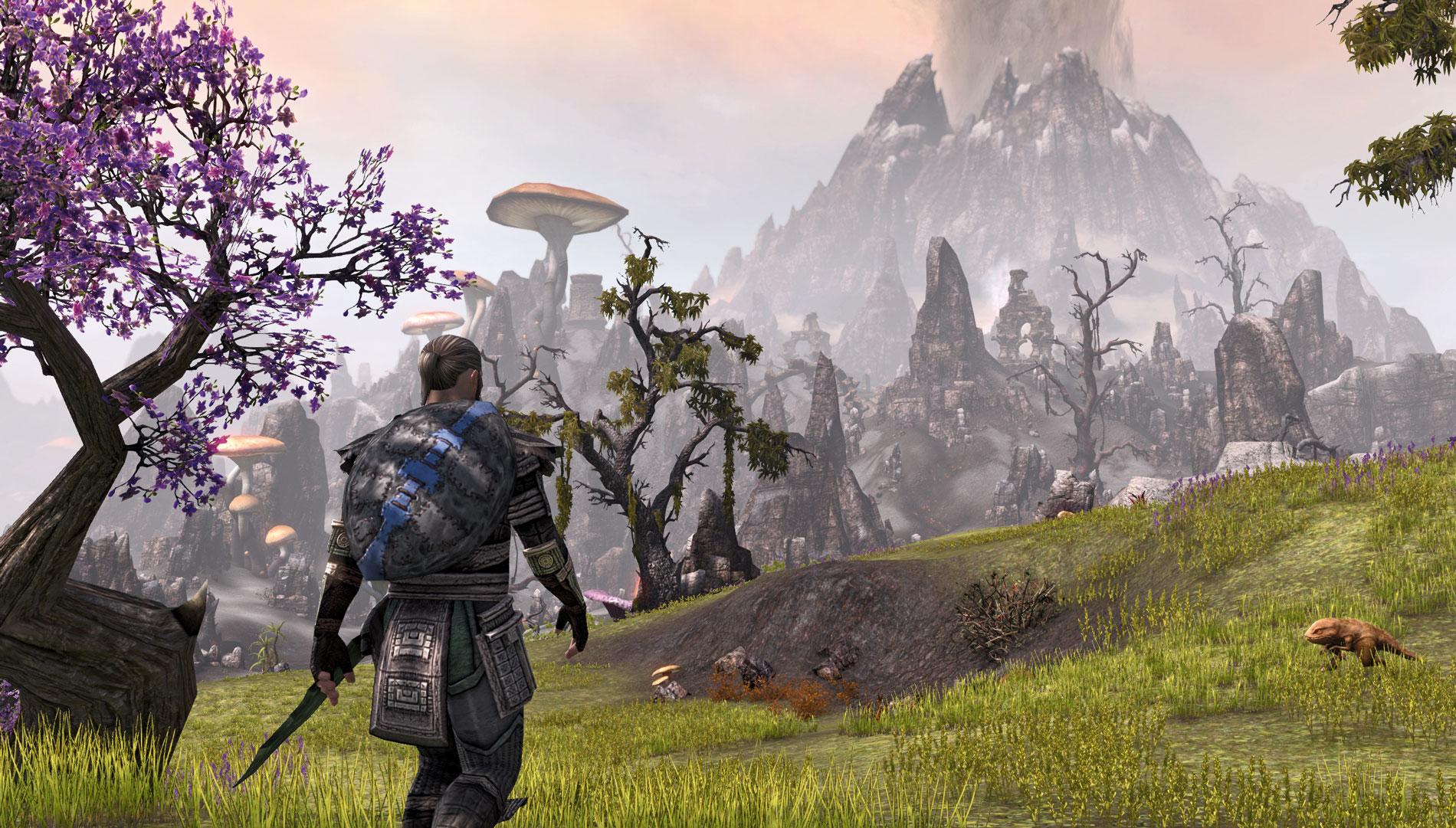 The-Elder-Scrolls-Online-fields