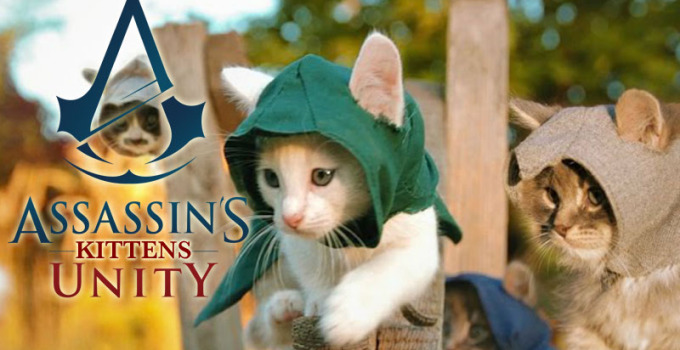 assassins-kittens-unity