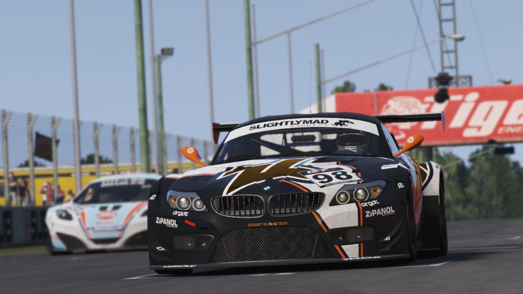Project CARS (5)
