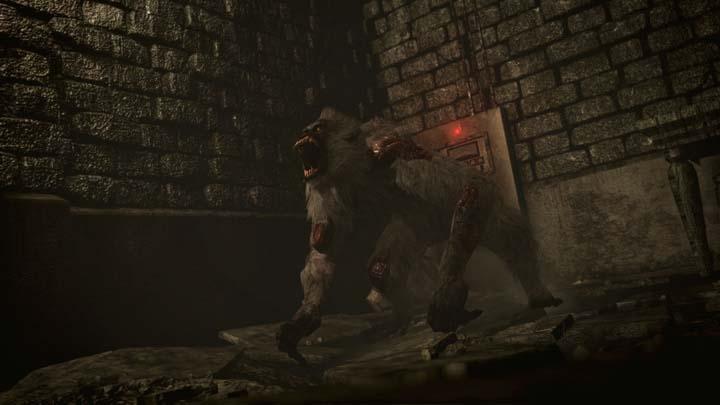 Resident-Evil0HD-15