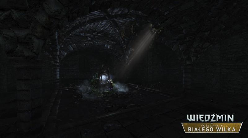 Wiedźmin 2: Pożegnanie Białego Wilka