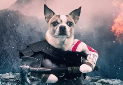 Wpadka agencji reklamowej. Oto Dog of War