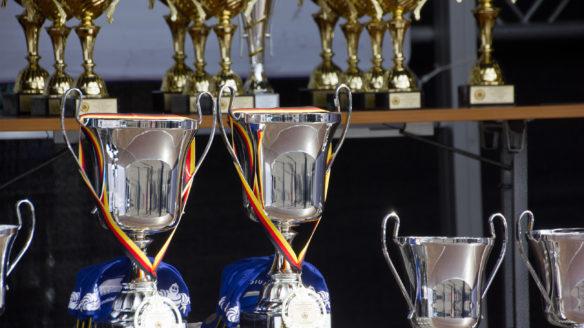D.I.C.E. Awards przyznano nagrody