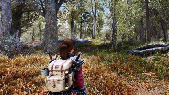 Skyrim - zrzut ekranu ze zmodowanej gry