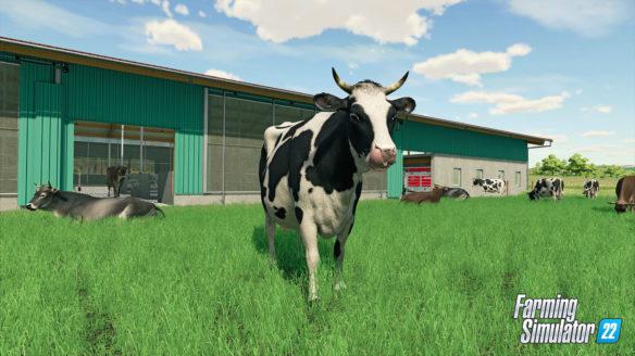 Farming Simulator 22 krówka